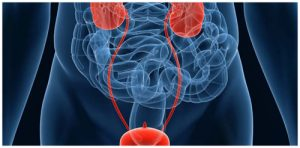 Urological Surgeon in Pune | Andrologist in Pune